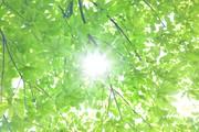 株式会社キール/神戸三田プレミアムアウトレット/テ/販売・接客のアルバイト・バイト・パート求人情報詳細