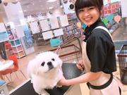 ペットワールドアミーゴ春日井店のアルバイト・バイト・パート求人情報詳細