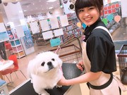 ペットワールドアミーゴ長野篠ノ井店のアルバイト・バイト・パート求人情報詳細
