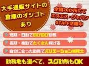 《勤務地:坂戸市》車通勤可☆日払いOK☆大手通販倉庫内スタッフ募集!