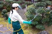 ダスキン成城喜多見トータルグリーンの求人画像